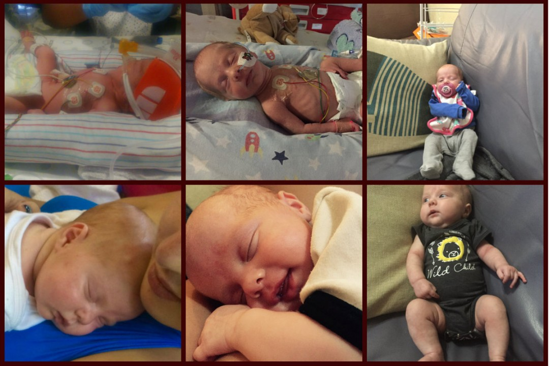 Harley 3 months collage